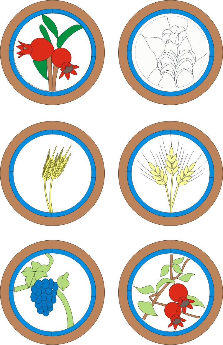 Bibliai növények